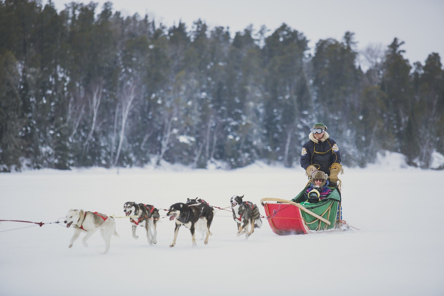 LOCATION: DRYDEN - BOREALIS DOG SLED ADVENTURE